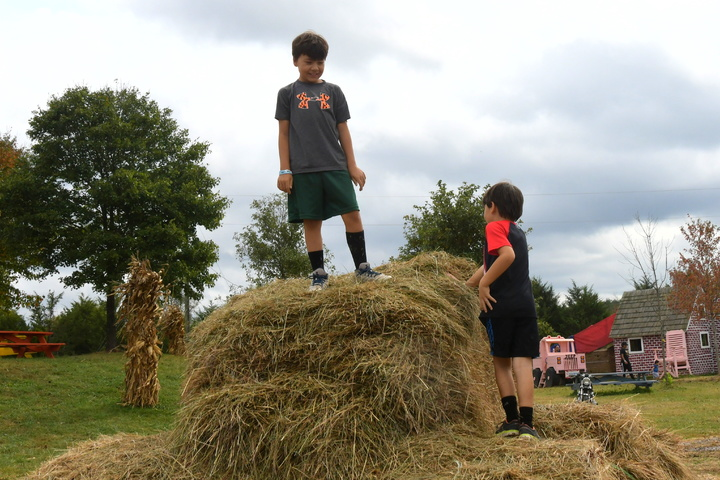 king of the hay tower